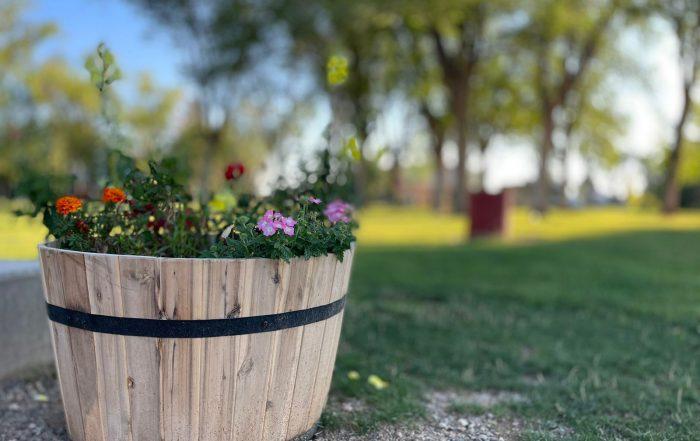 flowers, park, Cortez, Colorado, CREA Signature Events